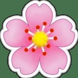 фавикон «Beauty Flowers»