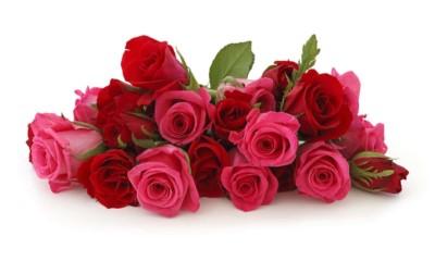 О магазине - Beauty Flowers | Доставка цветов по Москве