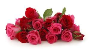 Купить радужные розы в Москве недорого   Доставка бесплатно